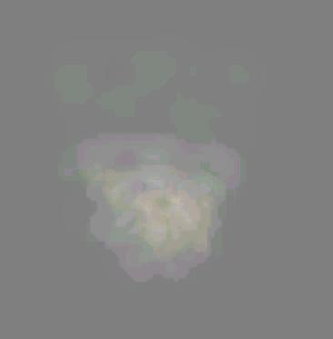 image-53-00_EMITTER.JPG